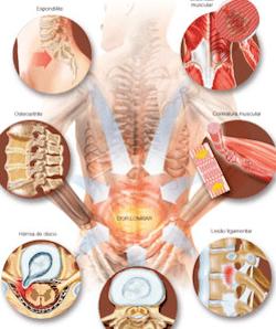 atlas-corpo-sistema