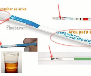 mergulhar-tira-teste-gravidez-urina