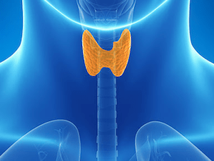 tireoide exame antitireoglobulina