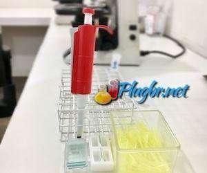 Exame sangue teste laboratório